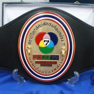 Channel 7 belt